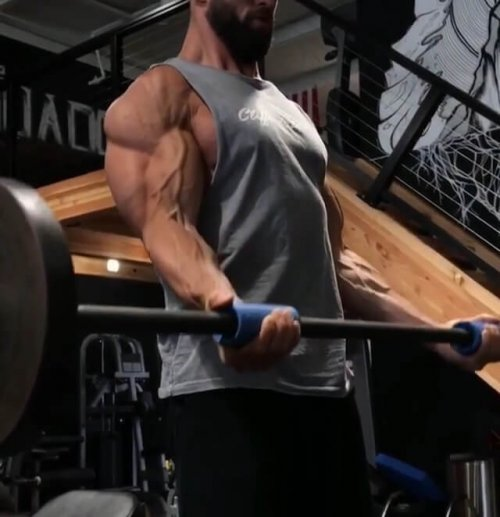 ファットグリップで前腕、上腕二頭筋のトレーニング効率を上げよう | ねす